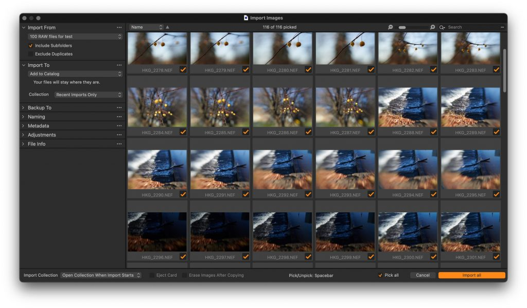 Capture One's CEO Hints at an Exciting AI and Mobile Future
