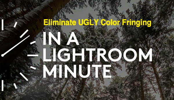 Lightroom Basics: Fix Ugly Chromatic Aberration in Just 1 Minute (VIDEO)