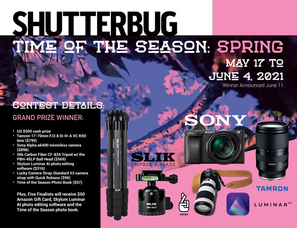 Shutterbug's Time of the Season Photo Contest Continues