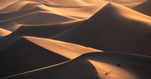 How to Capture the Unique Details of Sand Dunes with a Telephoto Lens