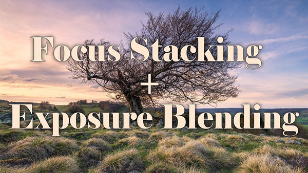 Combine Exposure Bracketing & Focus Stacking for the ULTIMATE Nature Photos (VIDEOS)
