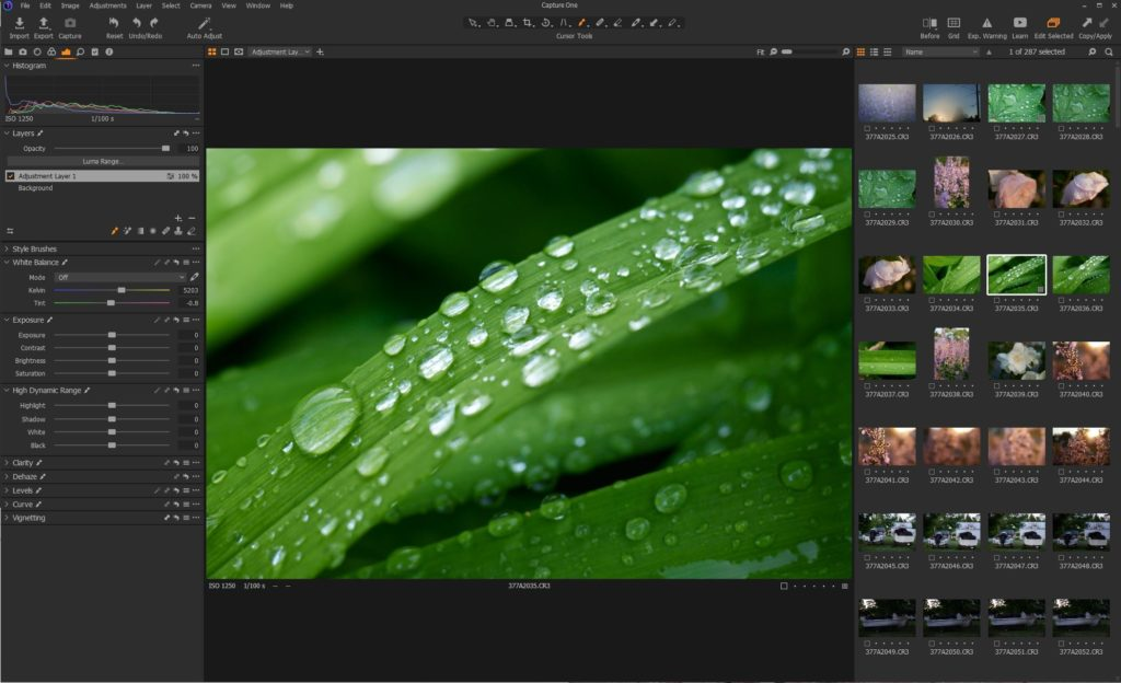 Capture One 21 Pro review: Raw power