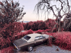 Get great-looking infrared photos on your phone – Amateur Photographer