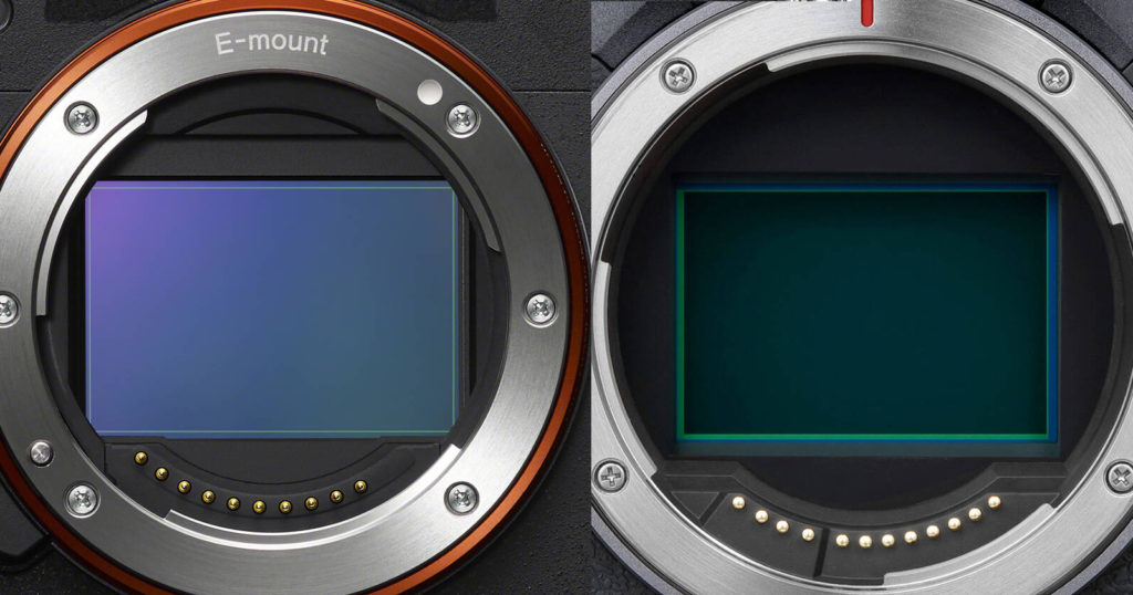 Canon R5 Beats Out the Sony Alpha 1 in Comprehensive IBIS Test