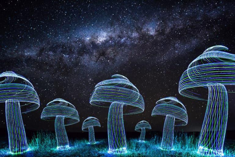 Rod Evans Spins Lights Around People Under Stellar Skies
