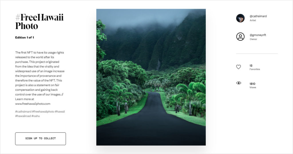 Photographer Sells Her Widely-Stolen Photo as NFT for $300K, Makes it Free