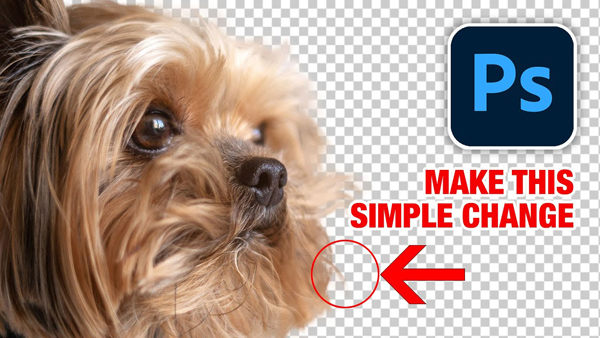 The Easiest Way to Cut Out Hair & Fur in Photoshop in Just 4 Minutes (VIDEO)